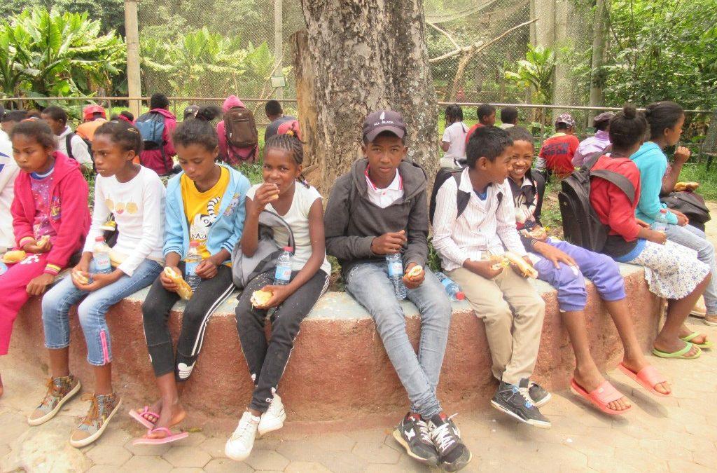 Janvier 2019 : Sortie au parc botanique et zoo de Tzimbazaza (Tananarive)